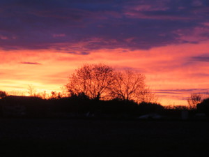 Sunrise over the Rioja Region, Spain