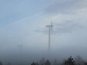 Windmills in the mist