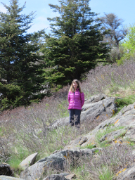 Laurie training to hike around Mount Rainier